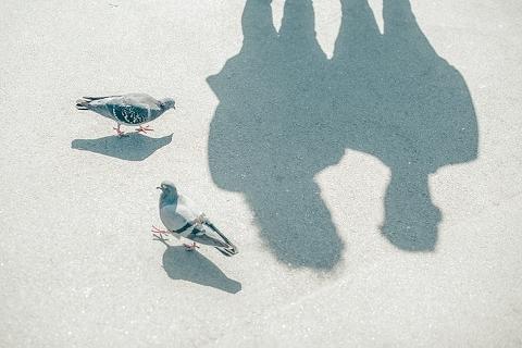 brockwell-park-engagemwnt-shoot-lesley-toni-ria-mishaal-photography-001