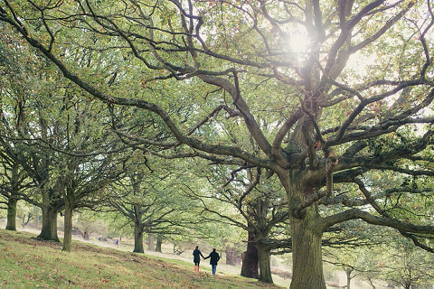 richmond-park-engagement-shoot-hannah-olly-ria-mishaal-photography-02