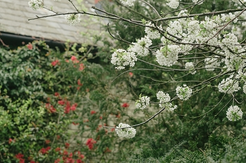 south-farm-wedding-mike-kate-ria-mishaal-photography-002